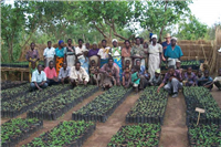 Village nursery3, Malawi