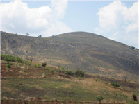 Deforested hillside from land clearing for cultivation and wood